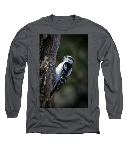 Downy Woodpecker Long Sleeve T-Shirt by Kenneth Cole