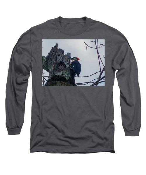 Hammering It Home Long Sleeve T-Shirt