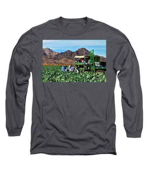 Harvesting Broccoli Long Sleeve T-Shirt by Robert Bales