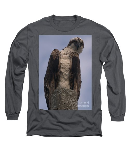Hawk Attitude Long Sleeve T-Shirt