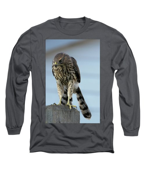 Hawk Fence Long Sleeve T-Shirt