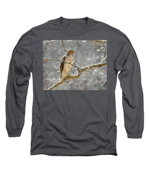 Hawk On Lookout Long Sleeve T-Shirt by George Randy Bass