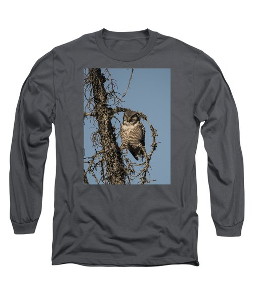Hawk Owl Gaze Long Sleeve T-Shirt