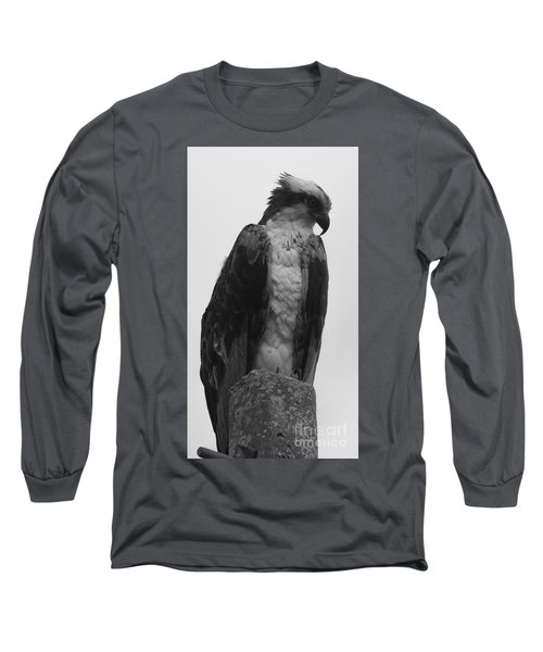 Hawk Perched Long Sleeve T-Shirt