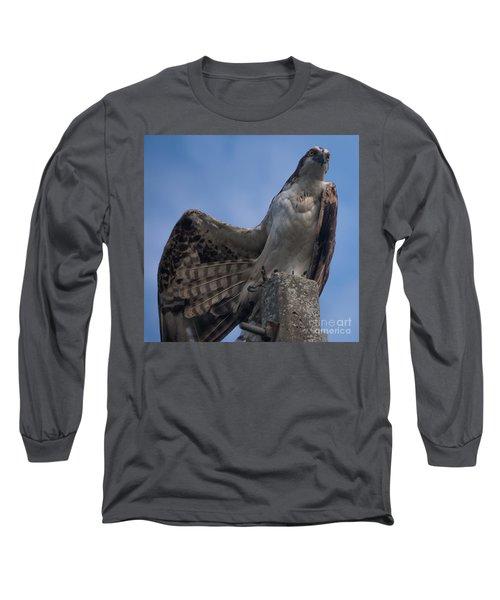 Hawk Stretching Long Sleeve T-Shirt