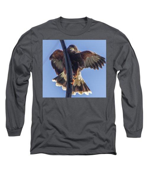 Hawk Watch 6 Long Sleeve T-Shirt