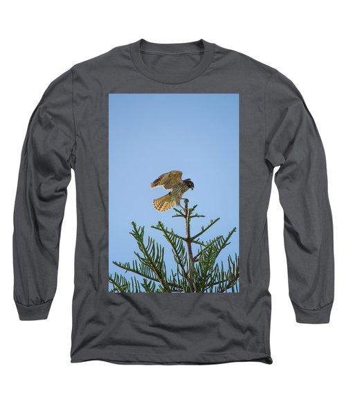 Hawk With Regal Landing Long Sleeve T-Shirt
