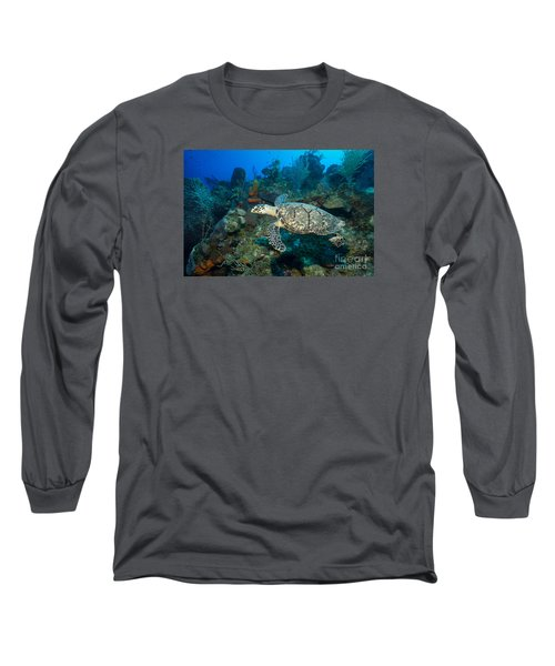 Hawksbill Haunt Long Sleeve T-Shirt by Aaron Whittemore