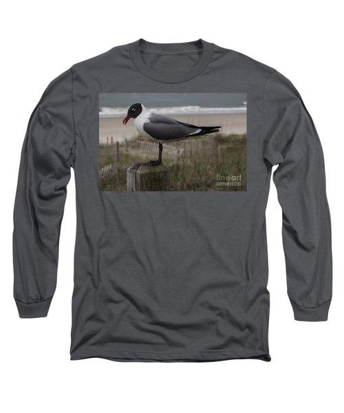 Hello Friend Seagull Long Sleeve T-Shirt
