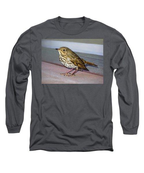 Hermit Thrush Long Sleeve T-Shirt