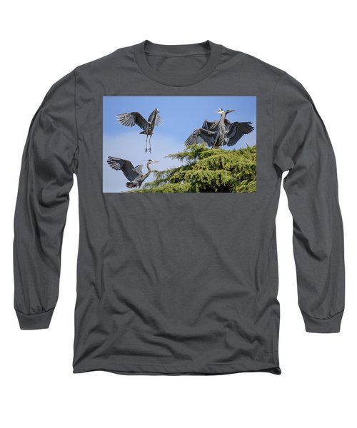 Herons Mating Dance Long Sleeve T-Shirt by Keith Boone