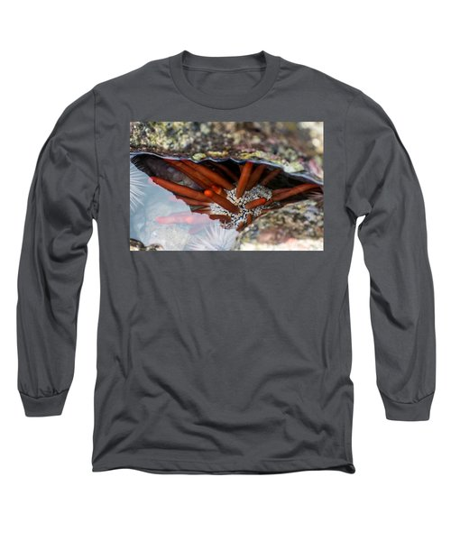 Long Sleeve T-Shirt featuring the photograph Hidden Treasure by Colleen Coccia