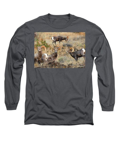 Hierarchy Long Sleeve T-Shirt by Steve Warnstaff