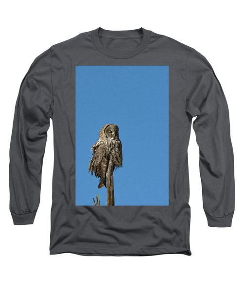 High Lookout Long Sleeve T-Shirt