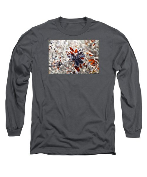 Long Sleeve T-Shirt featuring the photograph Hoar Frost - Nature's Christmas Lights  by Peggy Collins