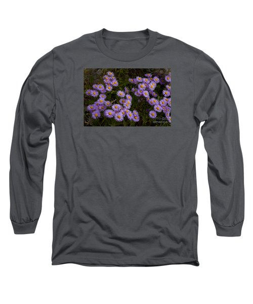 Hoary Tansyaster-signed-#9698 Long Sleeve T-Shirt