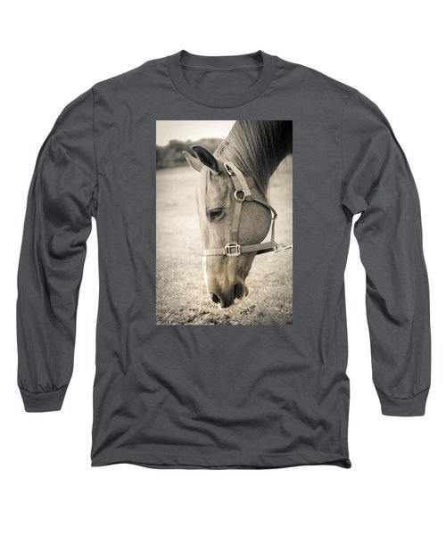 Long Sleeve T-Shirt featuring the photograph Horse Eating In A Pasture by Kelly Hazel