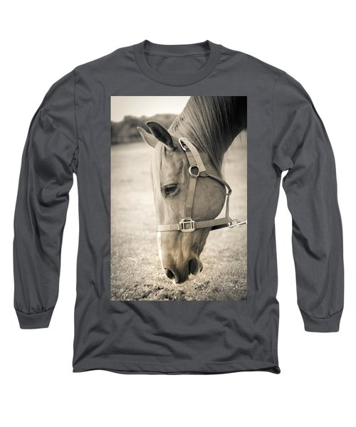 Horse Eating In A Pasture Long Sleeve T-Shirt