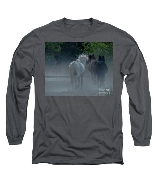Horse 8 Long Sleeve T-Shirt