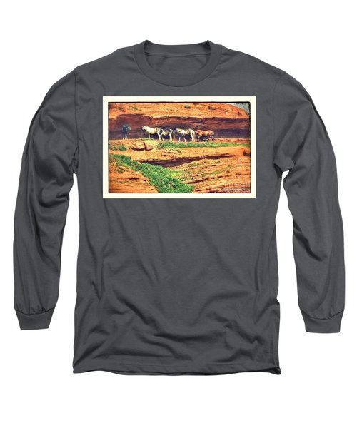 Horses Basking In The Sun Long Sleeve T-Shirt