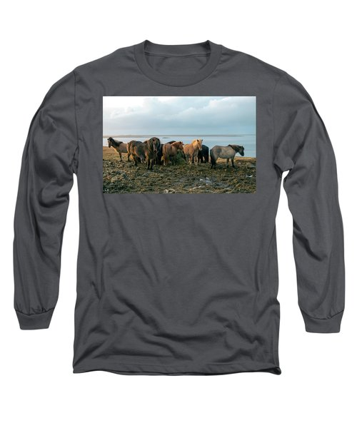 Horses In Iceland Long Sleeve T-Shirt by Dubi Roman