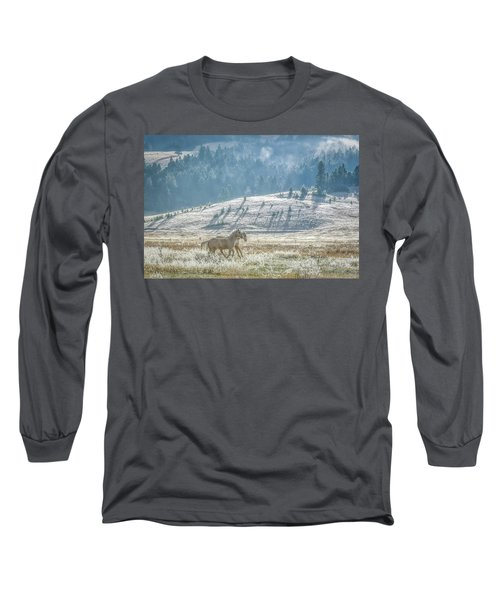 Horses In The Frost Long Sleeve T-Shirt by Keith Boone