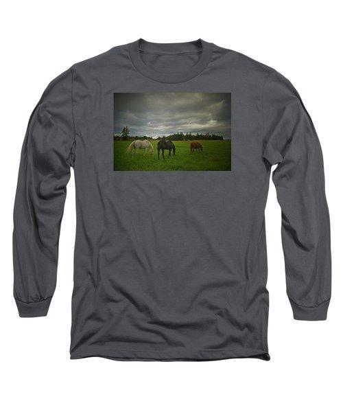 Horses Under Heavy Sky Long Sleeve T-Shirt