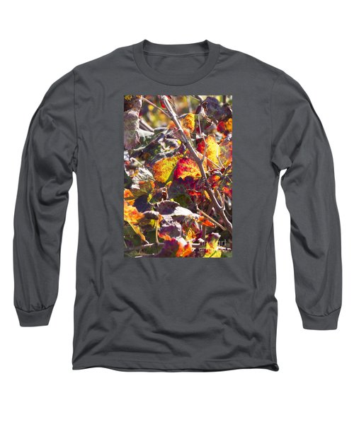 Hot Autumn Colors In The Vineyard 02 Long Sleeve T-Shirt by Arik Baltinester
