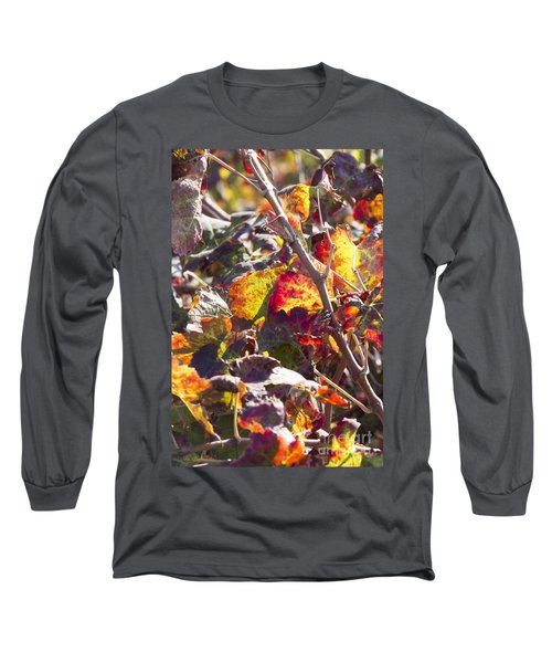 Long Sleeve T-Shirt featuring the photograph Hot Autumn Colors In The Vineyard 02 by Arik Baltinester