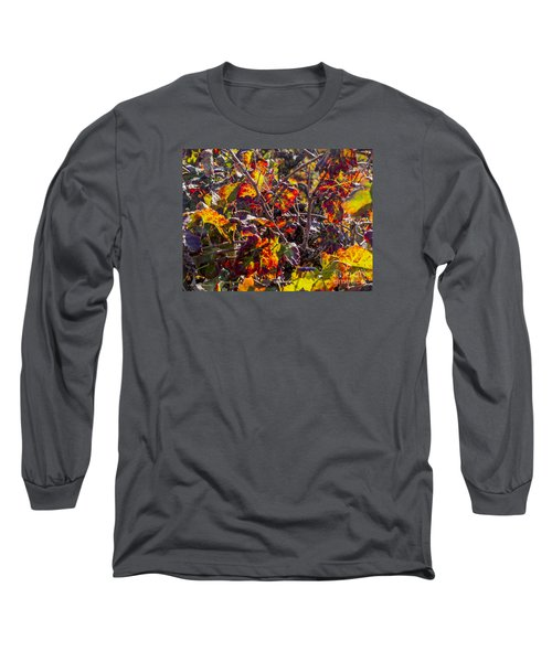 Hot Autumn Colors In The Vineyard 03 Long Sleeve T-Shirt by Arik Baltinester
