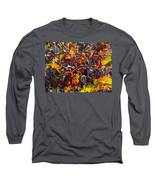 Long Sleeve T-Shirt featuring the photograph Hot Autumn Colors In The Vineyard 03 by Arik Baltinester