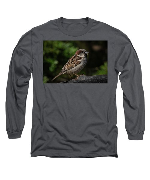 House Sparrow 2 Long Sleeve T-Shirt by Kenneth Cole