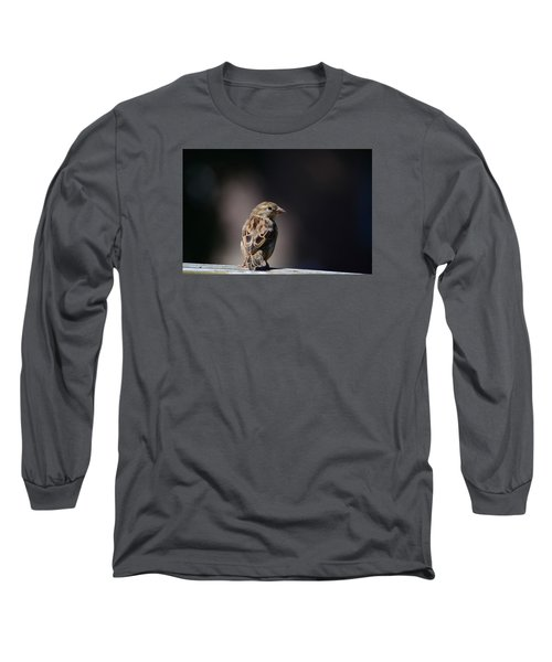 House Sparrow Long Sleeve T-Shirt by Kathy Eickenberg