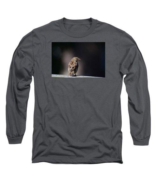 House Sparrow Long Sleeve T-Shirt