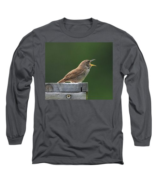 House Wren Stony Brook New York Long Sleeve T-Shirt by Bob Savage