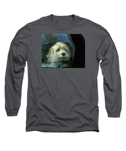 How Much Is That Doggie In The Window Long Sleeve T-Shirt