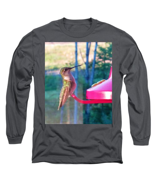 Hungry Hummer Long Sleeve T-Shirt by Jeanette Oberholtzer