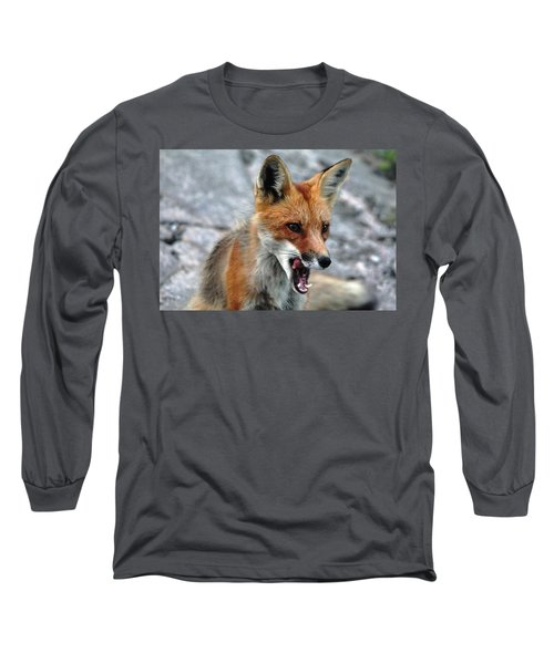 Long Sleeve T-Shirt featuring the photograph Hungry Red Fox Portrait by Debbie Oppermann