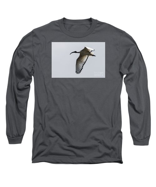 Long Sleeve T-Shirt featuring the photograph Ibis In Flight by Pravine Chester