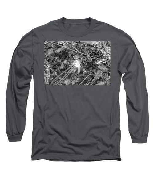 Ice Crystal In January Long Sleeve T-Shirt
