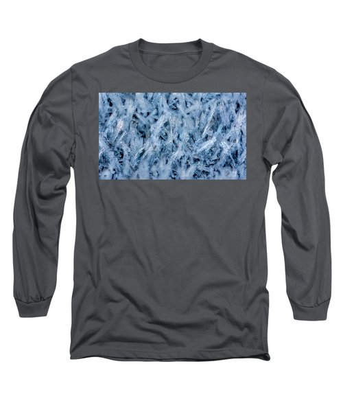 Ice Grass Growing Long Sleeve T-Shirt by Rainer Kersten