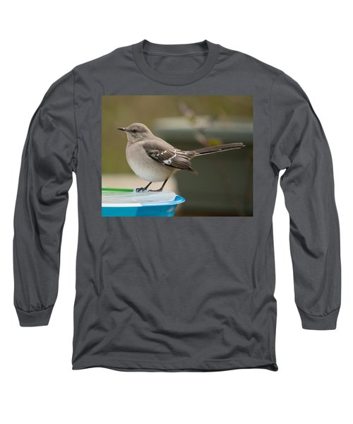 Ice Water Long Sleeve T-Shirt by Robert L Jackson