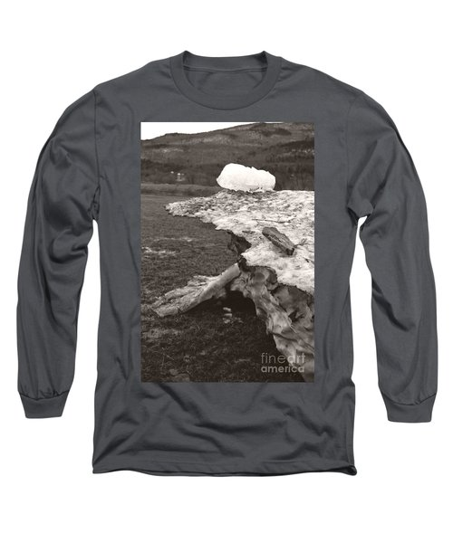 Iceberg Silo Long Sleeve T-Shirt
