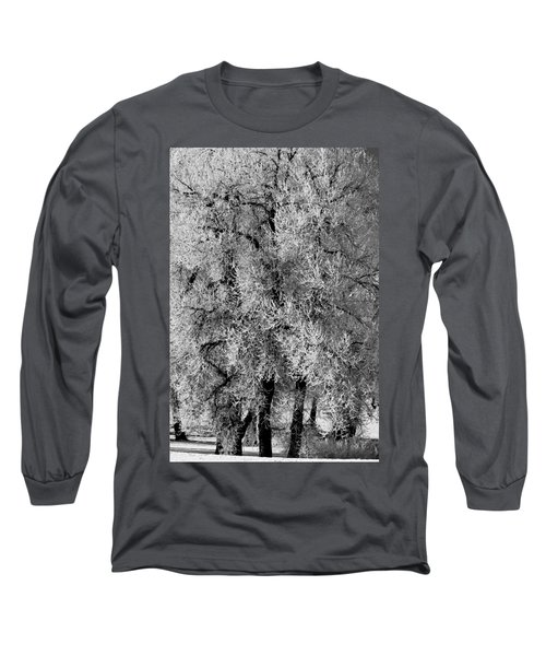 Long Sleeve T-Shirt featuring the photograph Iced Cottonwoods by Colleen Coccia