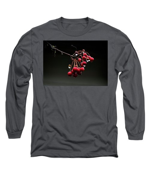 Iced Crab Apples Long Sleeve T-Shirt