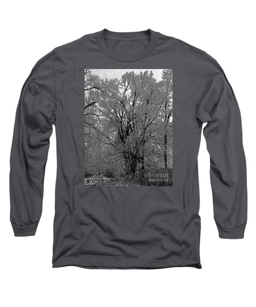 Iced Tree Long Sleeve T-Shirt by Craig Walters