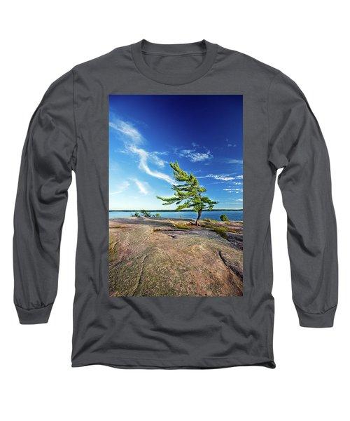 Iconic Windswept Pine Long Sleeve T-Shirt