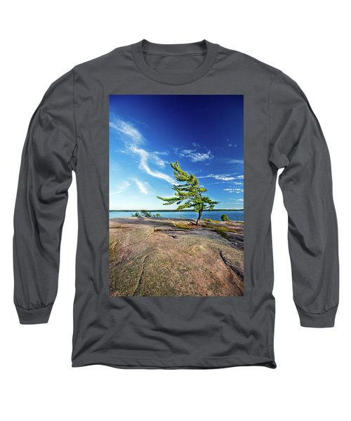 Iconic Windswept Pine Long Sleeve T-Shirt