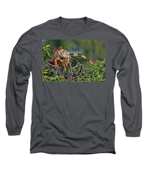 Long Sleeve T-Shirt featuring the photograph Iggy by Don Durfee