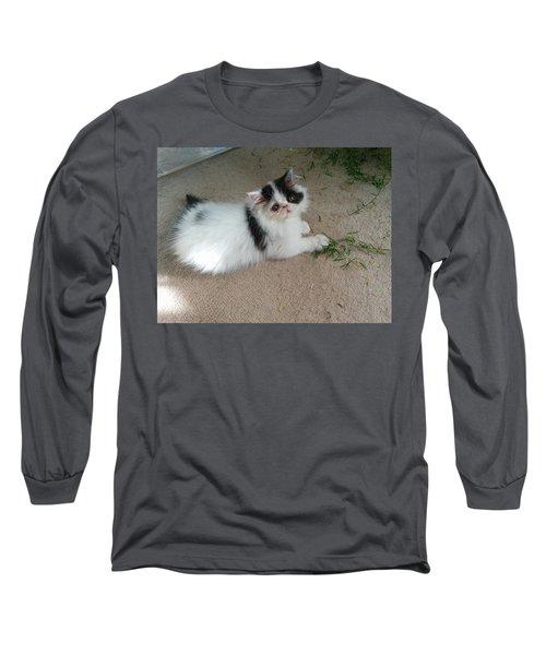 I'm Not Doing Anything Long Sleeve T-Shirt